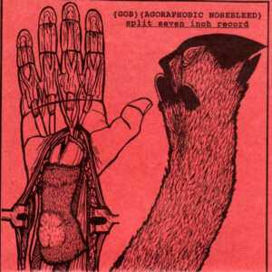 AGORAPHOBIC NOSEBLEED / GOB split EP
