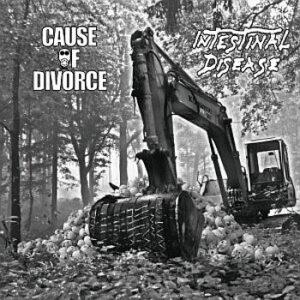 CAUSE OF DIVORCE / INTESTINAL DISEASE – split LP