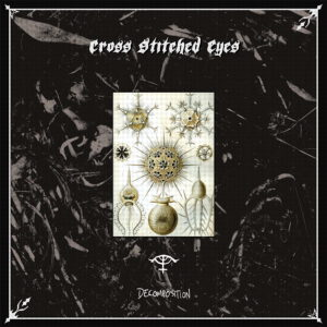 CROSS STITCHED EYES – Decomposition – LP