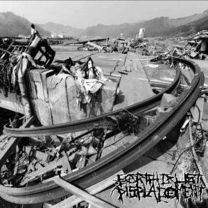 EARTH CRUST DISPLACEMENT – D-Takt Noize – LP